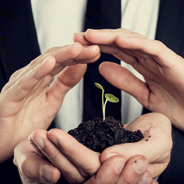 Diplomado en Dirección y Evaluación de Proyectos Ambientales