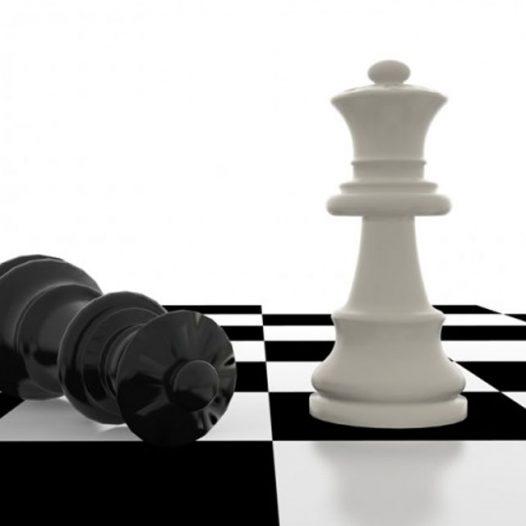 Experto en Planificador de Estrategias para el Éxito de la Empresa